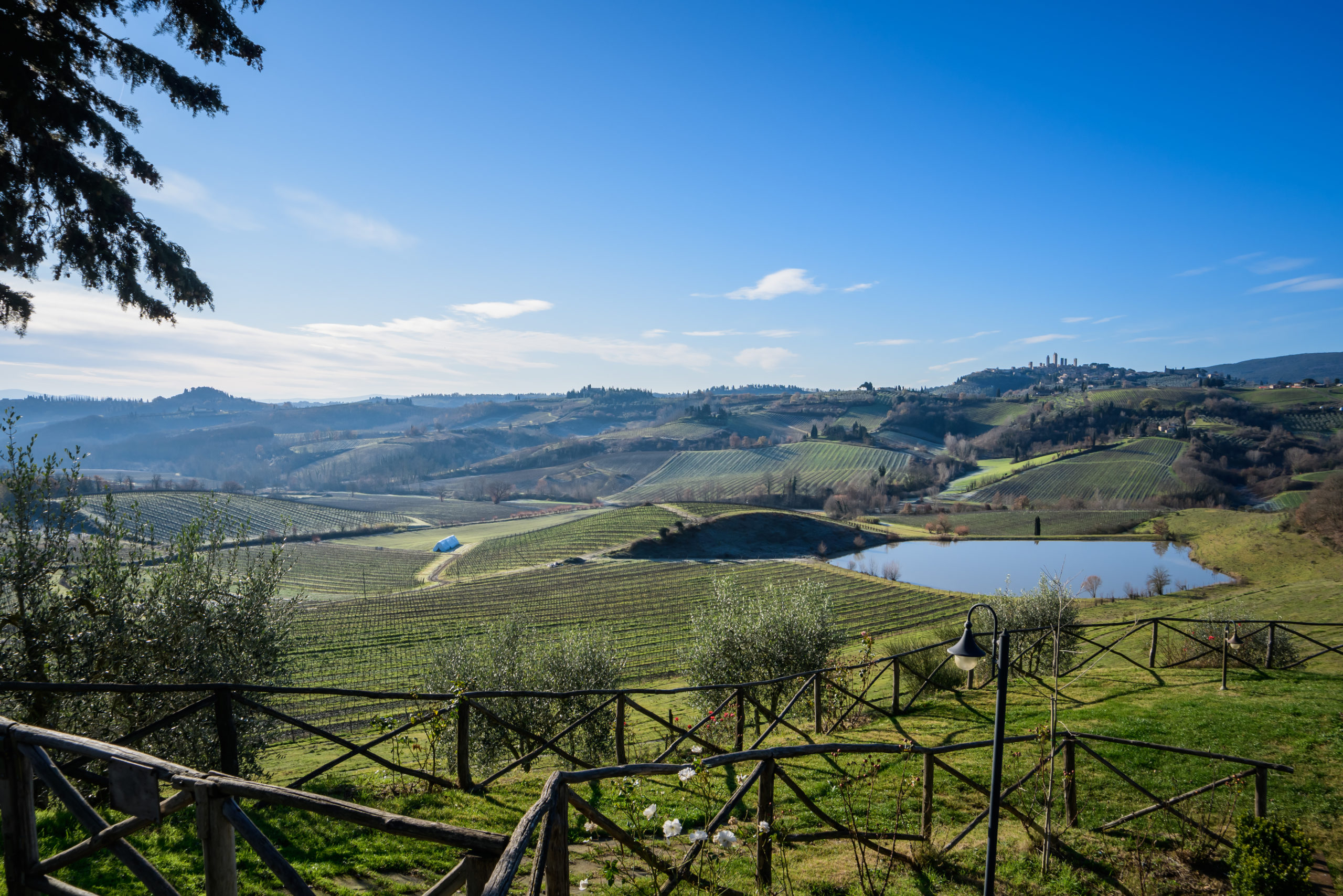 Vineyards of Tuscany, by John Monarch